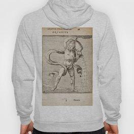 Hugo de Groot's Syntagma Arateorum 1600 - 22 Aquarius Hoody