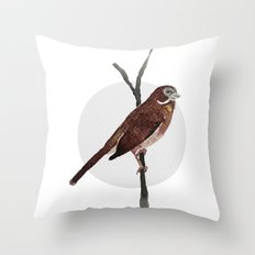 Messenger 002 Throw Pillow