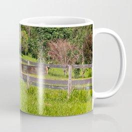 Broken fence in a rural area Coffee Mug