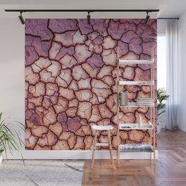 Claypan Wall Mural