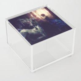 Centaur Girlfriend Acrylic Box