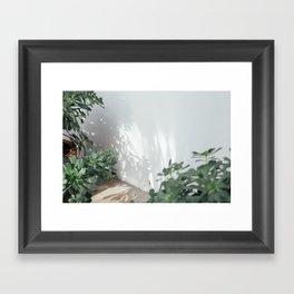 Succulents & Shadows Framed Art Print