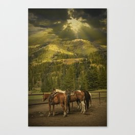 Western saddle riding horses near Yellowstone National Park Canvas Print
