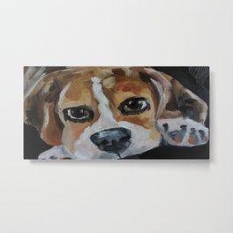Picture, art work, oil painting, animal, dog, beagle Metal Print