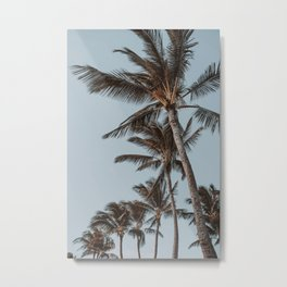 Palm Trees III / Kauai, Hawaii Metal Print