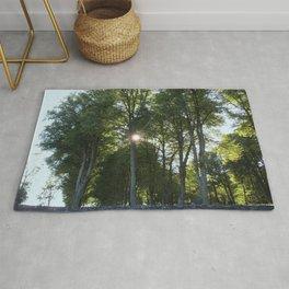 Sun behind the trees  Rug