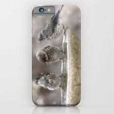Bath Times Three iPhone 6s Slim Case