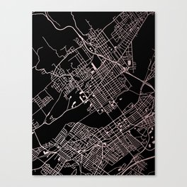 Wilkes-Barre Rose Gold and White Map Canvas Print