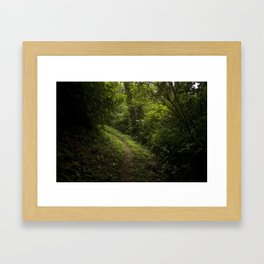 Green path Framed Art Print