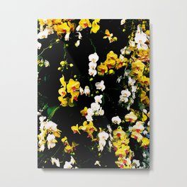 Orchid Celebration Metal Print