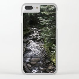 Hike to Tabletop Mountain Clear iPhone Case