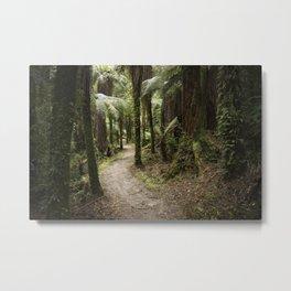 Path Through the Bush Metal Print
