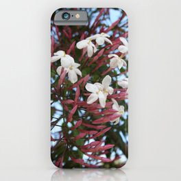 Pink Buds and Jasmine Blossom Close Up iPhone Case