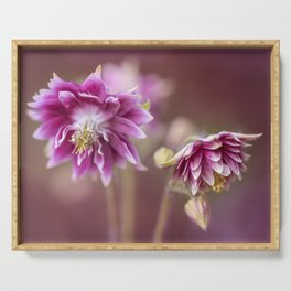 Light pink columbine flowers Serving Tray