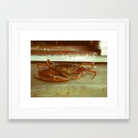 crab Framed Art Prints featuring Crab by Thomas Loewen