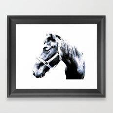El Caballo Amistoso Framed Art Print