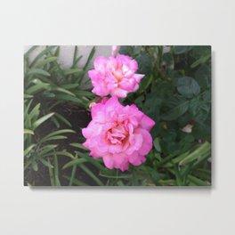Renegade Roses III Metal Print