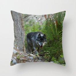 Stalking - Alpha Male Grey Wolf Throw Pillow