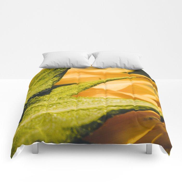 Sunflower (2) Comforters