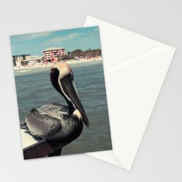 Florida Pelican Color Photo Stationery Cards