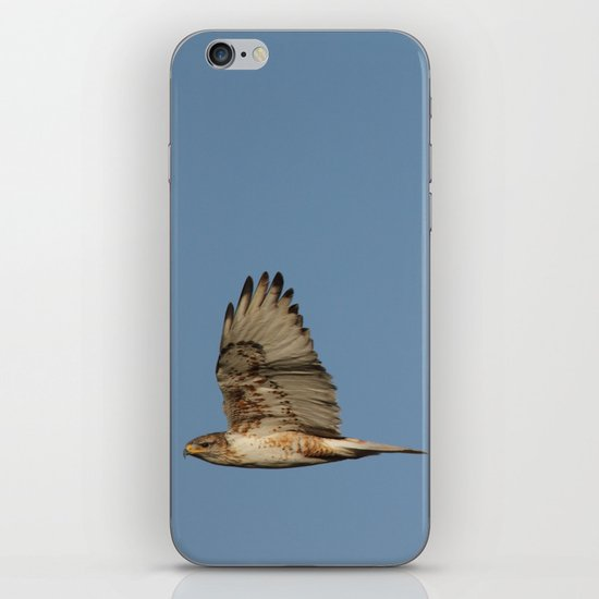 Ferrougenous Hawk iPhone & iPod Skin