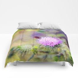 Wild Thistle Comforters