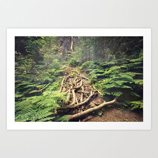Misty Rainforest Art Print
