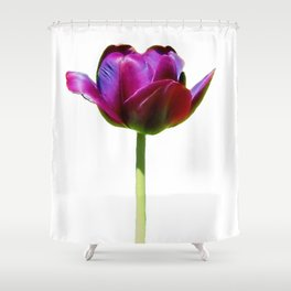 Born In The Purple Shower Curtain