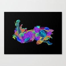 Candela Collage Canvas Print