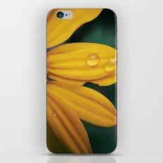 Yellow Water iPhone & iPod Skin