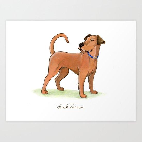 Irish Terrier Art Print