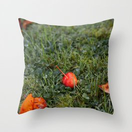 Autumn crab apple Throw Pillow