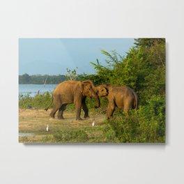 Elephant Smile Metal Print