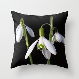 Spring Springs Eternal Throw Pillow