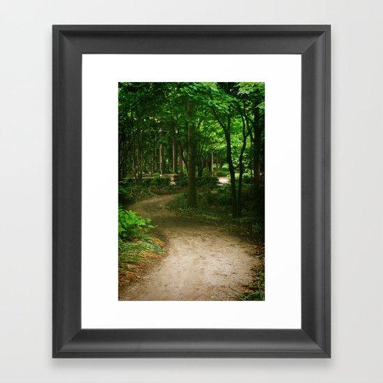 Down A Path Framed Art Print