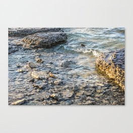 Georgian Bay #3 Canvas Print