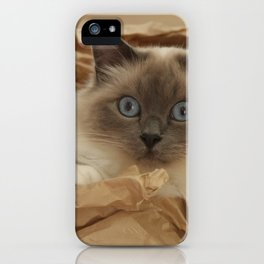 Cat in a Box iPhone Case