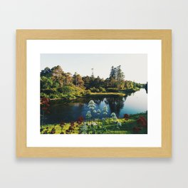 Ireland 20 Framed Art Print