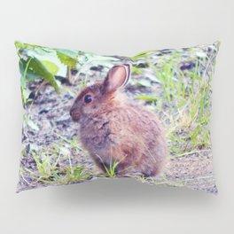 Easter Bunny perhaps Pillow Sham