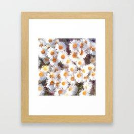 Spring Daisy Wildflower Watercolor Framed Art Print