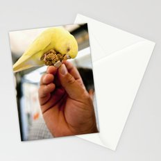 Yellow Parakeet Stationery Cards