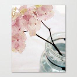 Minimalist Pink Hydrangea Canvas Print