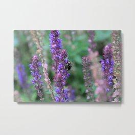 Lavender Bumblebee Metal Print