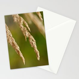 Only In Heart Stationery Cards