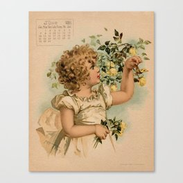 Little girl picking yellow roses Maud Humphrey Canvas Print