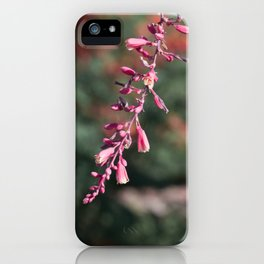 In The Pink iPhone Case
