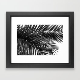Tropical Palm Leaves - Black and White Nature Photography Framed Art Print