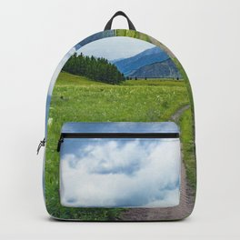 Alpine steppe in the background of snowy mountains Backpack