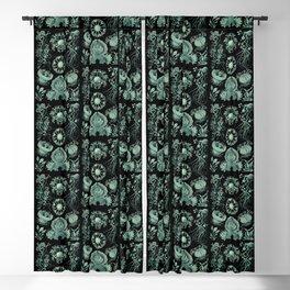 Ernst Haeckel Ascomycetes Sac Fungi Blackout Curtain