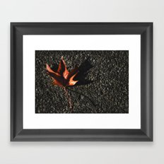 red leaf. Framed Art Print